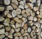 palivove-drevo-uvod